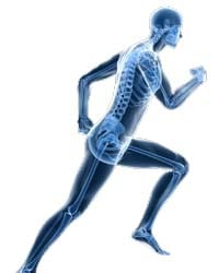 Adamson Chiropractic - Sports